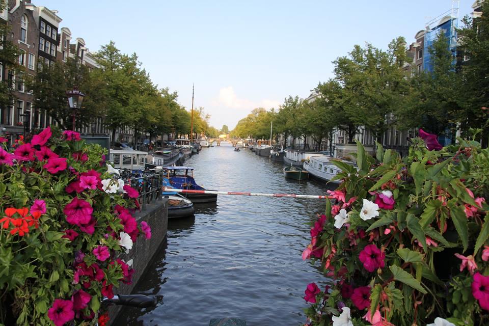 Amsterdam Training, Class, Book Signing & Hang!